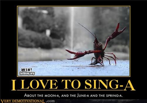 lobster,singing,song,funny