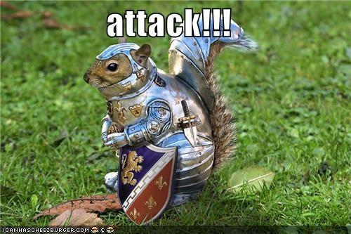 animals,armor,attack,knight,shield,squirrel