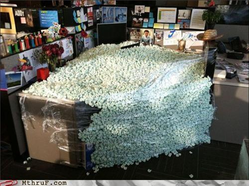 Office Prank Friday styrofoam