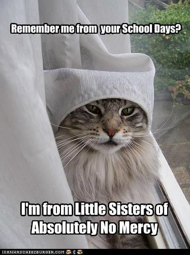 caption,captioned,cat,curtain,mercy,no,nun,pun,school,shawl,sisters