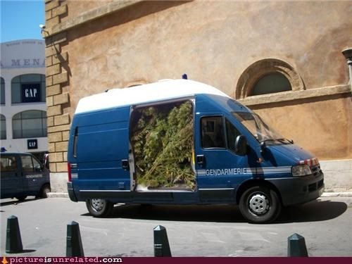 Due to Budget Cuts, The French Police Force is Being Replaced by Shrubs