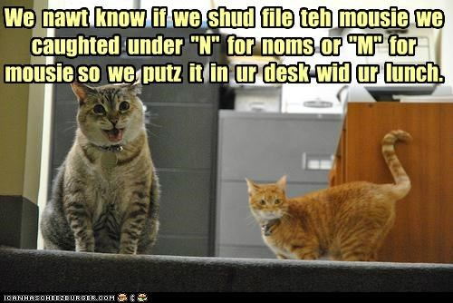 "We  nawt  know  if  we  shud  file  teh  mousie  we caughted  under  ""N""  for  noms  or  ""M""  for  mousie so  we  putz  it  in  ur  desk  wid  ur  lunch."