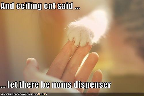 And ceiling cat said ...  ... let there be noms dispenser