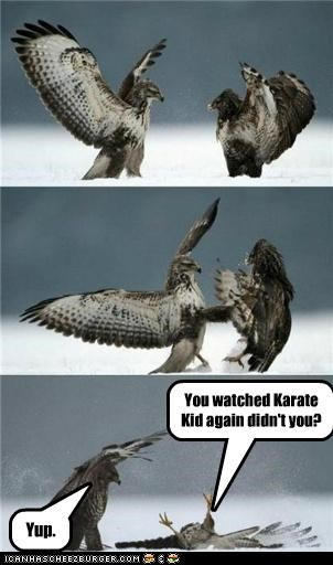 You watched Karate Kid again didn't you?