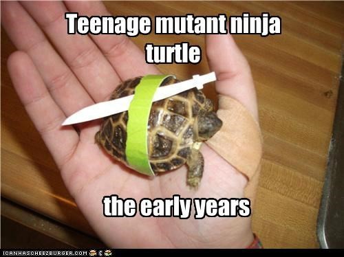 Mutant ninja turtle. The early years.