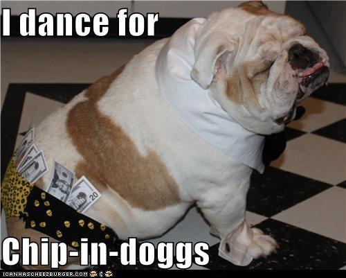 bulldog,chippendales,classy,dance,male stripper,money,stripper