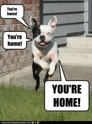 You're home!