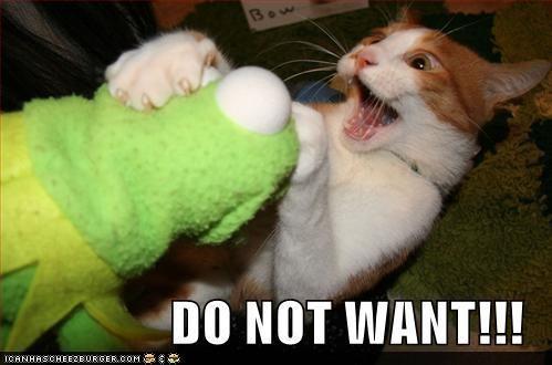 classics,do not want,kermit,kermit the frog,stuffed animals
