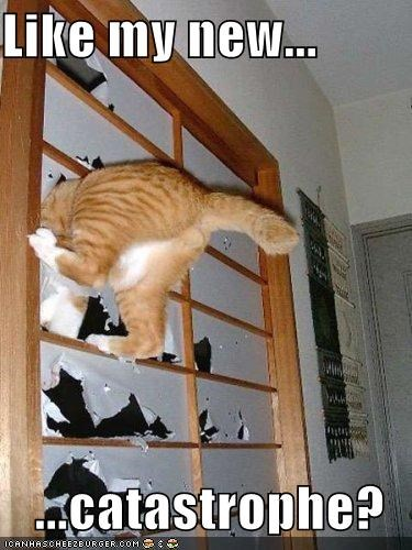 Like my new...  ...catastrophe?