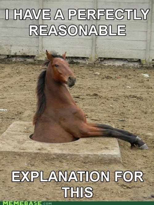 animemes,explanation,hole,horse,Memes,what