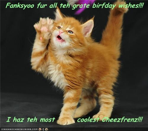 Fanksyoo fur all teh grate birfday wishes!!!    I haz teh most        coolest Cheezfrenz!!!