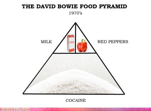 The David Bowie Food Pyramid