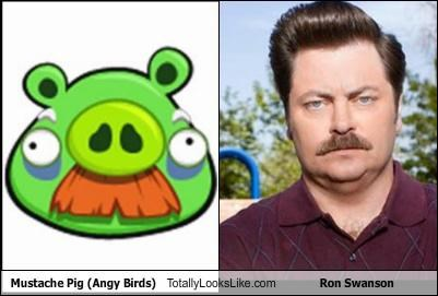 Mustache Pig (Angy Birds) Totally Looks Like Ron Swanson