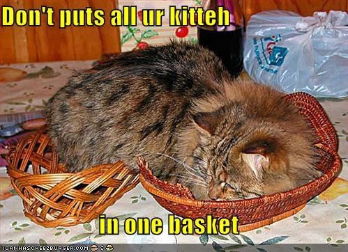 Don't puts all ur kitteh  in one basket