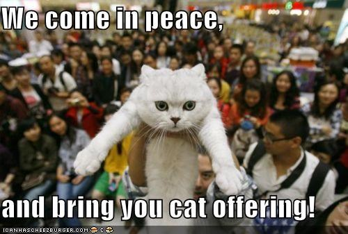 We come in peace,  and bring you cat offering!