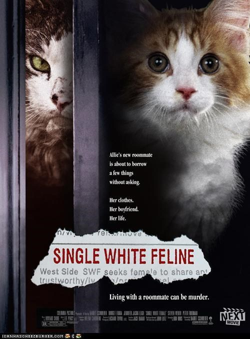 At the Movies With LOLcats