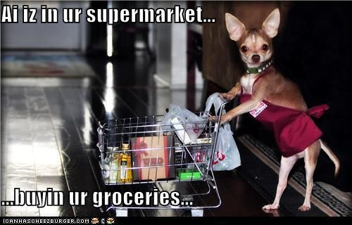 Ai iz in ur supermarket...  ...buyin ur groceries...