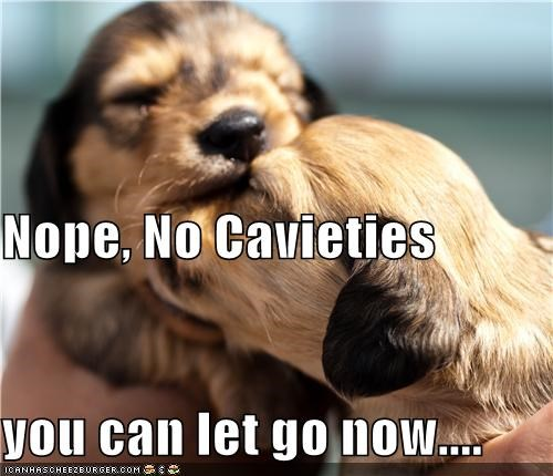 Nope, No Cavieties you can let go now....
