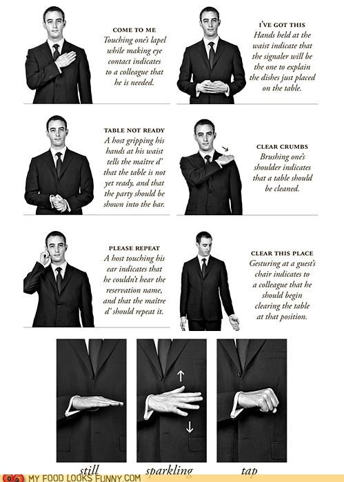 Secret Codes of the Fancy and Rich