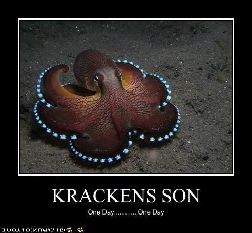 KRACKENS SON