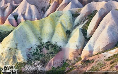 Mother Nature FTW: Sherbet Hills