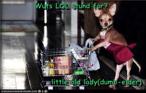 Wuts LOL stund for?  little old lady(dumb-elder)