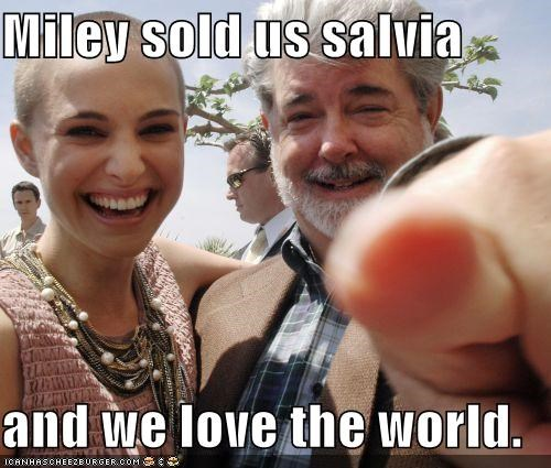 Miley sold us salvia  and we love the world.