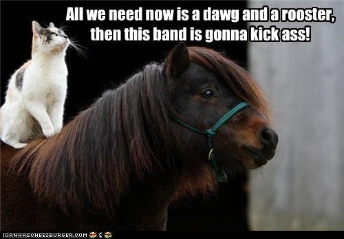 All we need now is a dawg and a rooster, then this band is gonna kick ass!