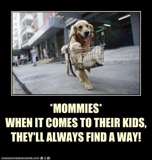 *MOMMIES*WHEN IT COMES TO THEIR KIDS, THEY'LL ALWAYS FIND A WAY!