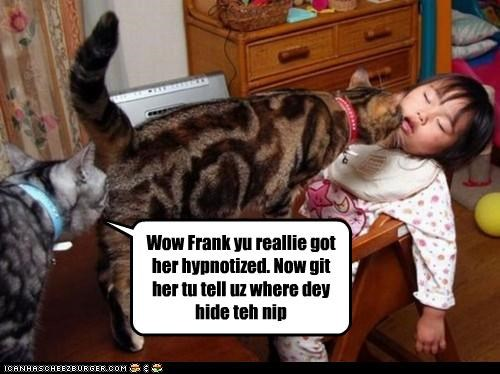 Wow Frank yu reallie got her hypnotized. Now git her tu tell uz where dey hide teh nip