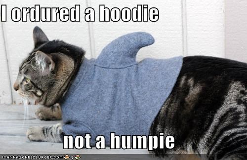 I ordured a hoodie   not a humpie
