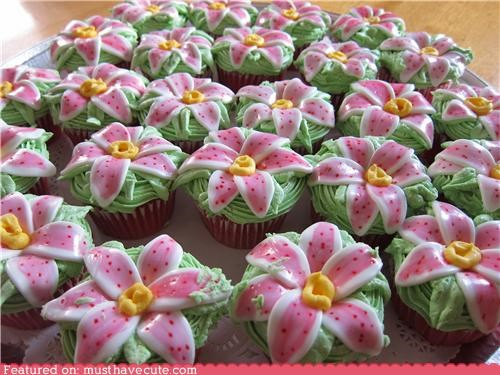 best of the week,cupcakes,epicute,flowers,fondant,frosting,green,lilies,pink,stargazers