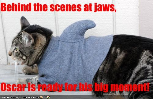Behind the scenes at jaws,  Oscar is ready for his big moment!