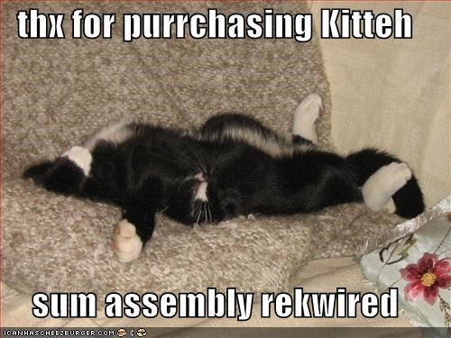 thx for purrchasing Kitteh  sum assembly rekwired