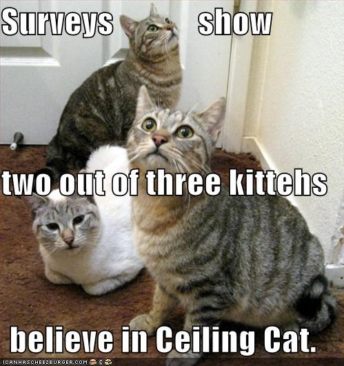 ceiling cat,lolcats,religion