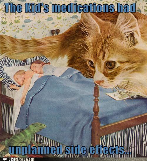 asleep,bedtime,bizarre,caption contest,cat,children,kids,lizard,mixed media,sleep,sleeping,wtf