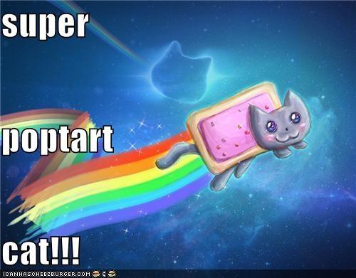super poptart cat!!!