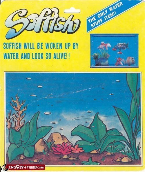 no eating,Soffish,strange pets,woken up by water