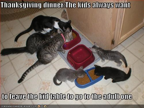 Thanksgiving dinner:The kids always want   to leave the kid table to go to the adult one
