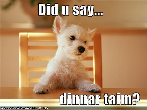 Did u say...  dinnar taim?