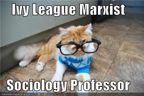caption,captioned,cat,glasses,Ivy League,lolwut,marxist,professor,sociology,sweater,tabby