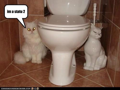 caption,captioned,cat,imitating,matching,posing,statue,symmetry