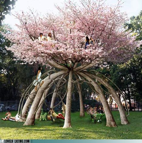best of the week,grow,house,park,tree