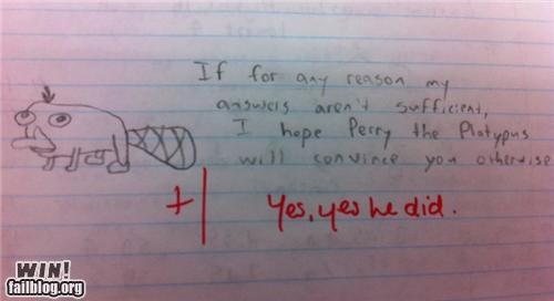 answer,cartoons,doodle,education,paper,response,school,test
