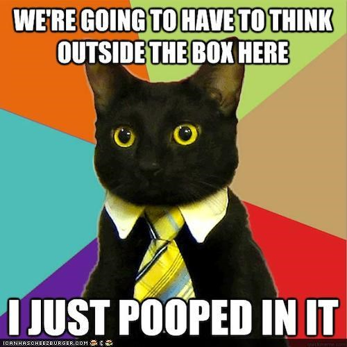 best of the week,Business Cat,litter box,memecats,Memes,outside the box,poop,thinking