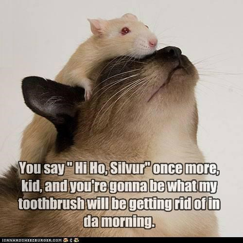"""You say """" Hi Ho, Silvur"""" once more, kid, and you're gonna be what my toothbrush will be getting rid of in da morning."""