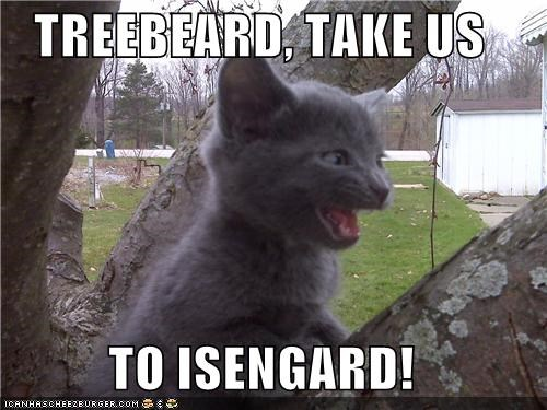 best of the week,caption,captioned,cat,Hall of Fame,isengard,kitten,Lord of the Rings,riding,take,tree,treebeard,us