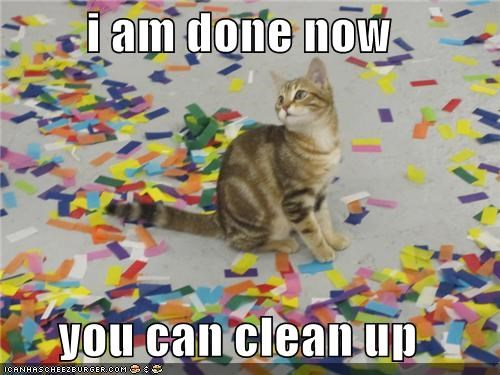 caption,captioned,cat,clean,confetti,done,finished,I,mess,now,permission,playing,up