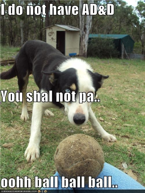 I do not have AD&D You shal not pa.. oohh ball ball ball..