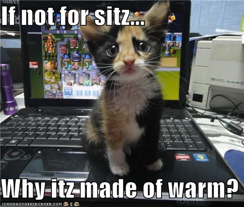 If not for sitz...  Why itz made of warm?